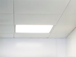 Hygienic Ceiling Cladding