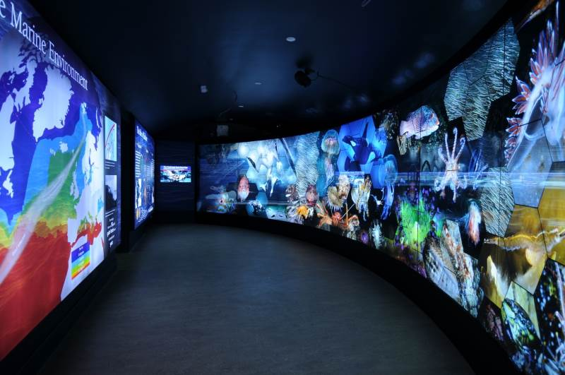 Backlit frameless light boxes on a grand scale