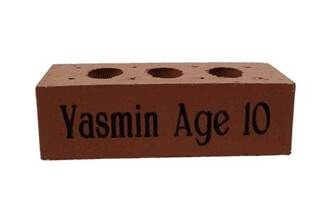 House Brick with 2 Stroke Fonts