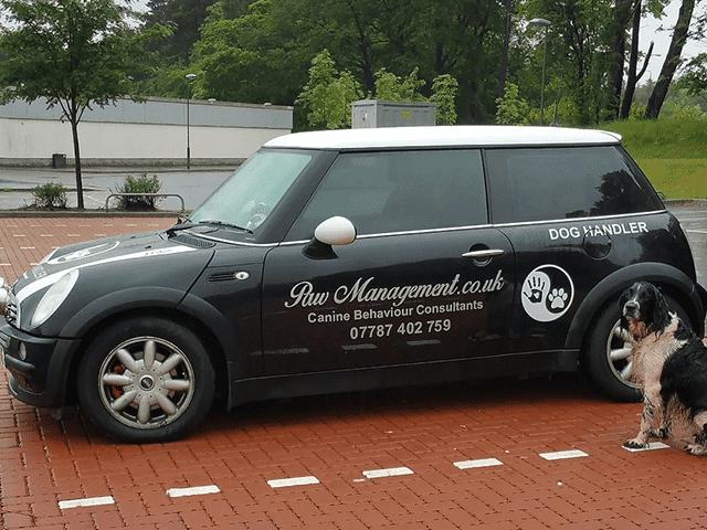 Vehicle Graphics / Signwriting