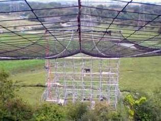 Power Line Crossing Nets