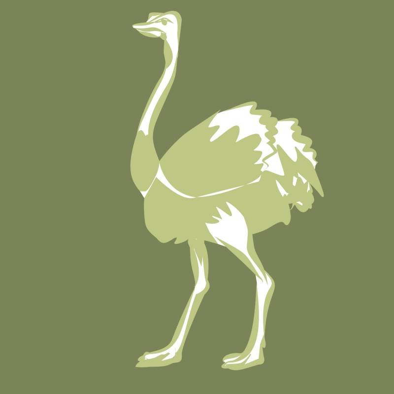 Main image for The Odd Ostrich