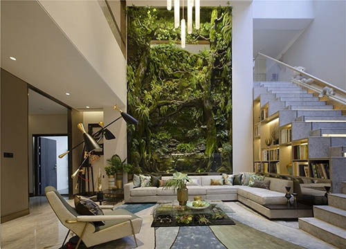 4 Reasons why moss walls are so popular