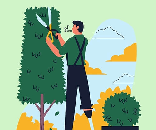 Top 5 Steps to Land into a Successful Tree Surgeon Job