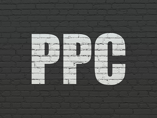 Pay Per Click Consultancy