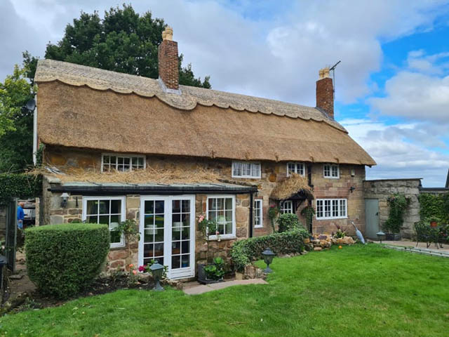Thatched Roofing Services