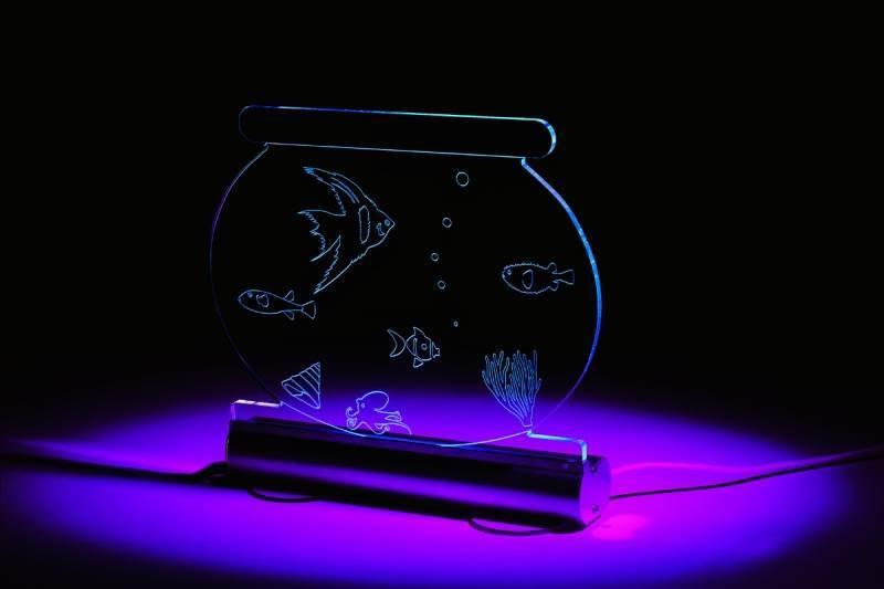 Acrylic Fish Tank